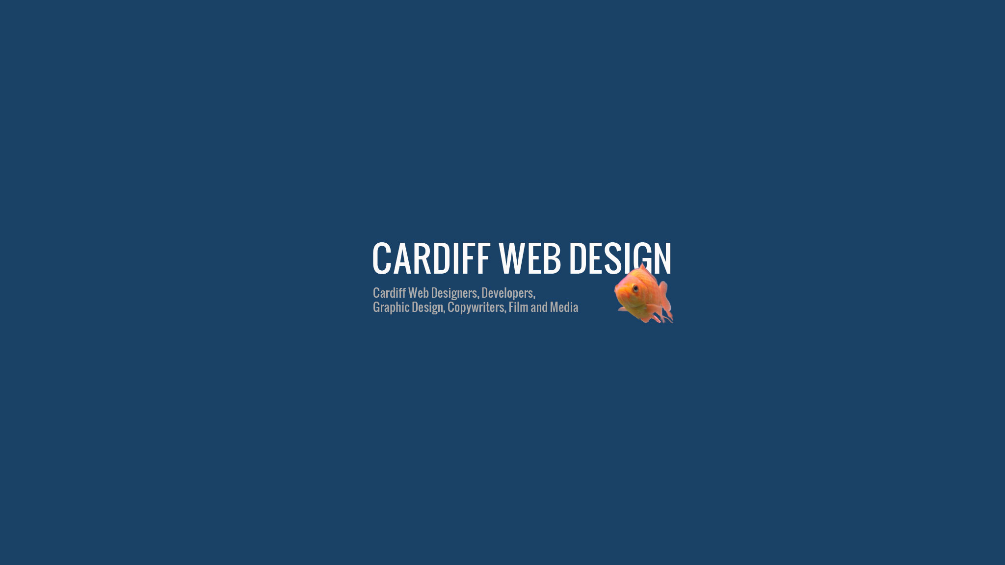 Cardiff Web Design Ltd – Animated Promotional Video